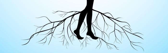Roots & StressWood